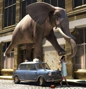 elephant step
