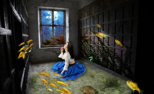fish room
